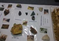 Factor de Desarrollo de la Minería Argentina